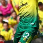 Wolverhampton Wanderers Norwich City Pronostico 23/02/2020 5