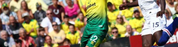 Wolverhampton Wanderers Norwich City Pronostico 23/02/2020 1